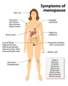 phytoestrogens - symptoms of menopause